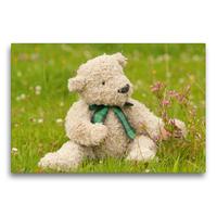 Premium Textil-Leinwand 75 x 50 cm Quer-Format Geliebte Bären - Teddys   Wandbild, HD-Bild auf Keilrahmen, Fertigbild auf hochwertigem Vlies, Leinwanddruck von Meike Bölts
