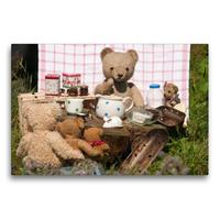 Premium Textil-Leinwand 75 x 50 cm Quer-Format Teddy Kochbär   Wandbild, HD-Bild auf Keilrahmen, Fertigbild auf hochwertigem Vlies, Leinwanddruck von Meike Bölts