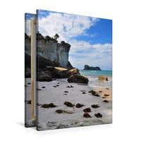 Premium Textil-Leinwand 60 x 90 cm Hoch-Format Stingray Beach   Wandbild, HD-Bild auf Keilrahmen, Fertigbild auf hochwertigem Vlies, Leinwanddruck von Nadine Büscher
