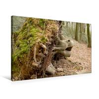 Premium Textil-Leinwand 75 x 50 cm Quer-Format Der Zauberwald   Wandbild, HD-Bild auf Keilrahmen, Fertigbild auf hochwertigem Vlies, Leinwanddruck von Uwe Bernds
