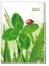 Taschenkalender Marienkäfer 2021