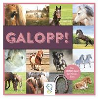 Galopp!