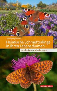 Heimische Schmetterlinge in ihren Lebensräumen entdecken und erkennen