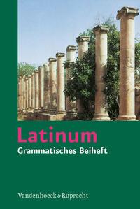 Latinum, Ausgabe B. Lehrgang für den später beginnenden Lateinunterricht, Grammatisches Beiheft