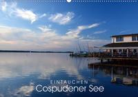 EINTAUCHEN - Cospudener See (Wandkalender 2020 DIN A2 quer)