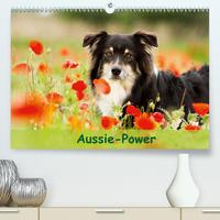 Aussie-Power (Premium, hochwertiger DIN A2 Wandkalender 2020, Kunstdruck in Hochglanz)