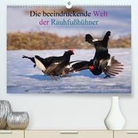 Die beeindruckende Welt der Rauhfußhühner (Premium, hochwertiger DIN A2 Wandkalender 2020, Kunstdruck in Hochglanz)