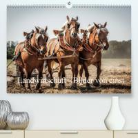 Landwirtschaft - Bilder von einst (Premium, hochwertiger DIN A2 Wandkalender 2022, Kunstdruck in Hochglanz)