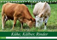 Kühe, Kälber, Rinder (Tischkalender 2022 DIN A5 quer)
