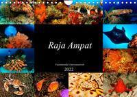 Raja Ampat - Faszinierende Unterwasserwelt (Wandkalender 2022 DIN A4 quer)