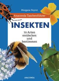Cover: Morgane Peyrot Insekten - 70 Arten entdecken und bestimmen
