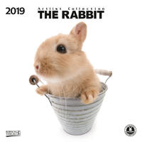 The Rabbit 2019