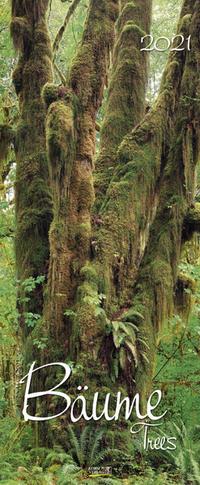 Bäume 2021