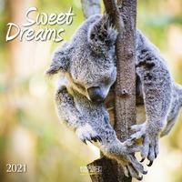 Sweet Dreams 2021