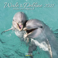 Wale und Delfine, Whales and Dolphins 2021
