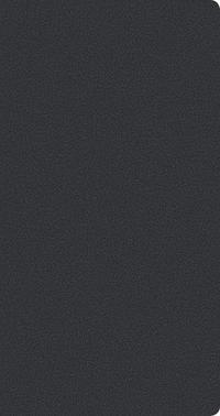 Taschenkalender Tizio Flexicover schwarz M 2021