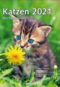 Wochenkalender Katzen 2021