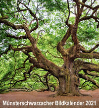 Münsterschwarzacher Bildkalender 2021