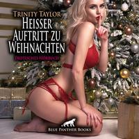 Heißer Auftritt zu Weihnachten   Erotische Geschichte Audio CD
