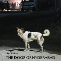 The dogs of Hyderabad