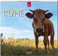 Kühe 2021