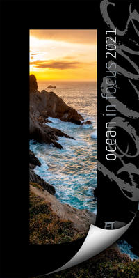 Ocean in Focus 2021