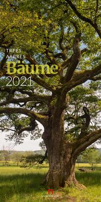 Bäume, Trees, Arbres 2021