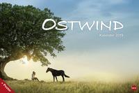 Ostwind Broschur XL - Kalender 2019