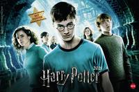 Harry Potter Broschur XL Kalender 2021