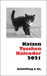 Katzen Taschenkalender 2021