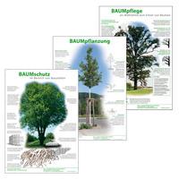 Infoposter Baumpflanzung, Baumpflege, Baumschutz