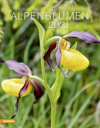 Alpenblumen Kalender 2021