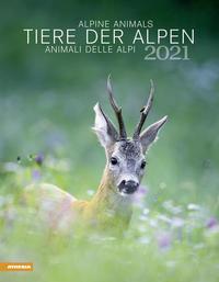 Tiere der Alpen - Kalender 2021