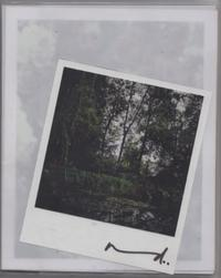 Darren Almond: The Giverny Polaroids